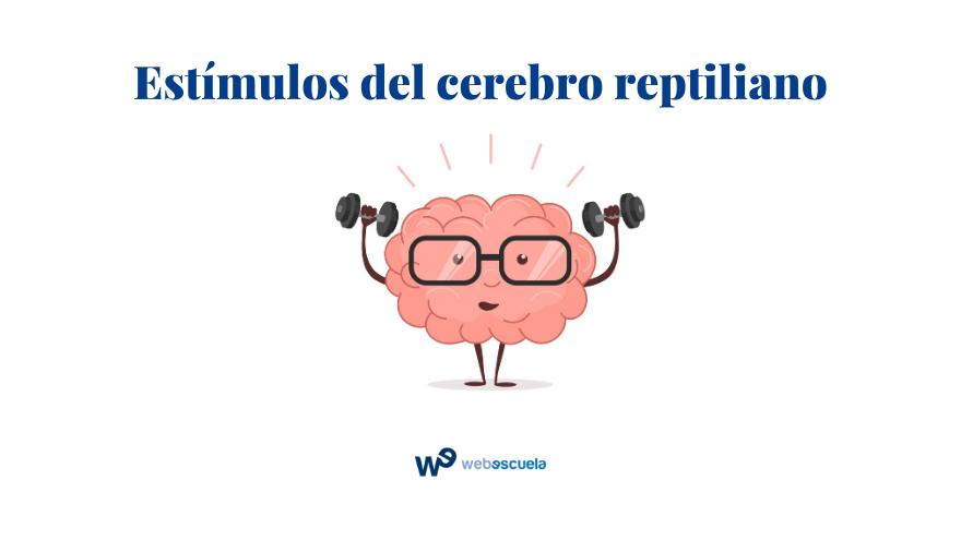 Cómo ganarte a tu cliente con el neuromarketing