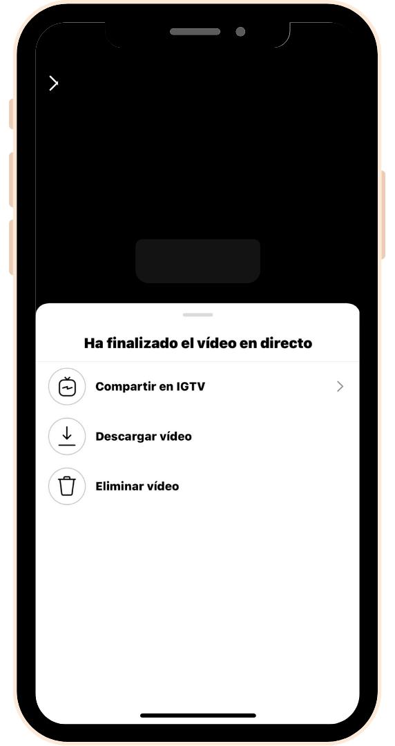 Finalizar video